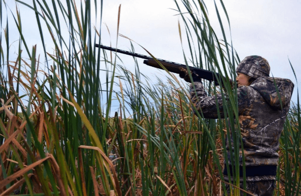 best guns for duck hunting
