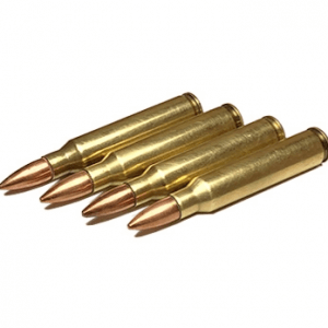 223 Remington 55 Grain Full Metal Jacket