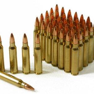 5.56x45mm-55gr FMJ